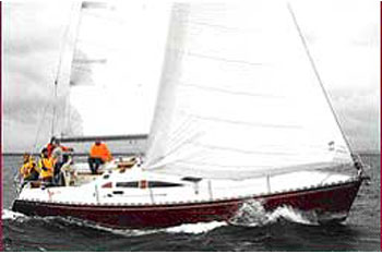 Delphia 40 (3Cab)