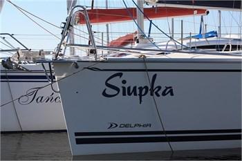 Delphia 26